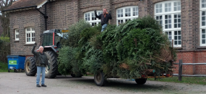 Christmas Tree Recycling @ Victory Hall car park, Stockcroft Rd